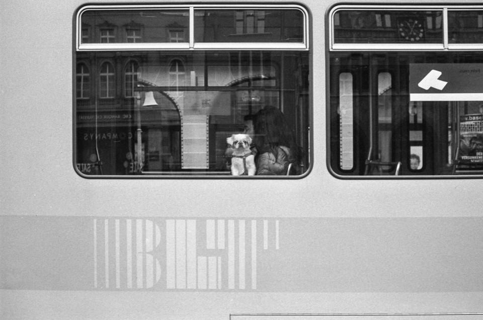 Basler Alltag (1)